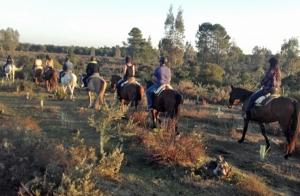 Paseo a caballo por La Suara